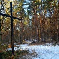 Крест у лесной дороги :: Ростислав