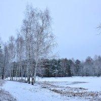 Зимними тропками :: Miola