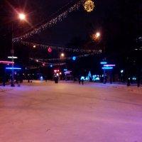 дорога в в ценре парке Сокольники в декабре :: Павел Михалев