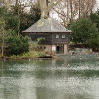 Лебединый домик :: Witalij Loewin