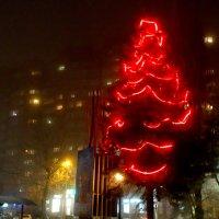 Туманный вечер и праздничный наряд... :: Тамара (st.tamara)