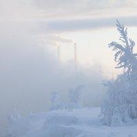 И снег, и солнце, и мороз... :: Алексей Хаустов