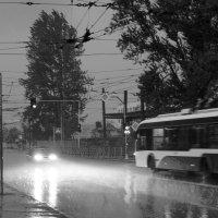 дождь, троллейбусы. :: сергей лебедев