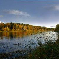 Река :: Виктор Бондаренко