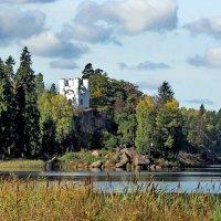 Осень в Монрепо :: Николай