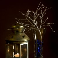 Лед и пламя :: Ирина Белавенцева