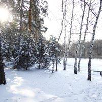 Зима в Святогорске :: Надежда Хлыстова