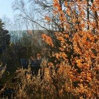 Осень :: Валерий Талашов