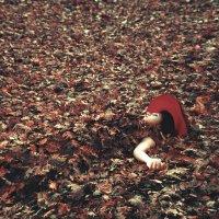 bitki örtüsü :: Selman Şentürk