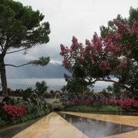 Парк напровив Монтрё-Палас. Панорама Женевского озера и Французских Альп :: Елена Павлова (Смолова)