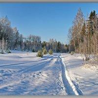 Зимние пейзажи. :: Любовь Чунарёва