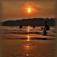 купание с солнцем :: Сергей Розанов