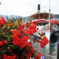 Люцерн (Luzern), озеро в Швейцарии, более распространённое название ≈ Фирвальдштетское озеро :: Елена Павлова (Смолова)