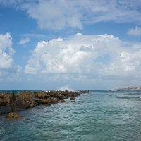 Средиземное море, Натания :: Алексей Фишер