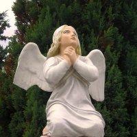 Ангел со сломанным крылом :: Сергей Карачин