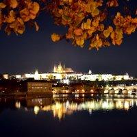 Мелодия осеннего вечера :: Ольга