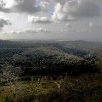 Вид с горы Кармель :: Ольга