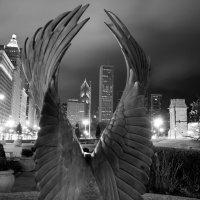 Chicago Millennium Park :: Ro Man