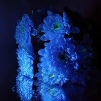 The fragrance of flowers :: Татьяна Кретова