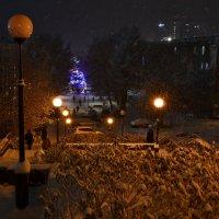 Снегопад :: Ольга