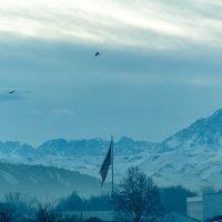 Утро в Кыргызстане :: Павел Ребрук