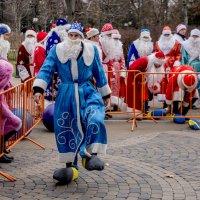 Нелепый Дед мороз! :: Андрей Печерский