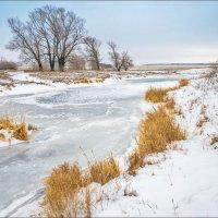 Река в декабре :: Любовь Потеряхина