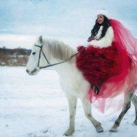 конный двор :: Елена Инютина