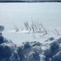 Снежные дали :: Валерий Талашов