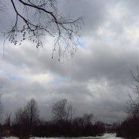 IMG_7952 - Вам не нравится весна? :: Андрей Лукьянов