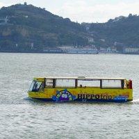 Водный автобус :: Natalia Harries