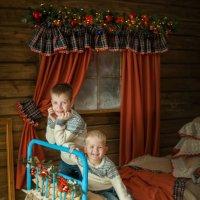 новый год :: Ольга Шеломенцева