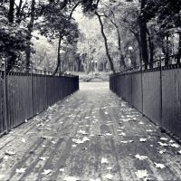 Осень :: Сергей Быковский