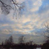 IMG_8040 - Самый короткий день в году клонился к закату :: Андрей Лукьянов