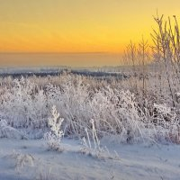 Холодная заря :: Валерий Талашов