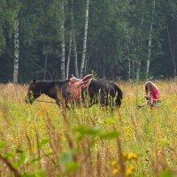 Читающая девушка и лошадь (УЖЕ НЕ читающая) :: Андрей Лукьянов