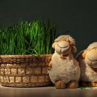 С овечками и зелёной травой :: Светлана Л.