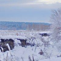Сегодня морозно ! :: A. SMIRNOV