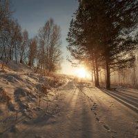 след на снегу :: Дамир Белоколенко