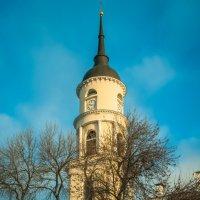 Колокольня троицкого кафедрального собора, Калуга :: Алексей Кошелев