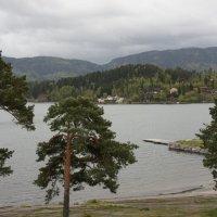 По дороге из Осло во Флом :: Елена Павлова (Смолова)