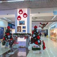 Новогодняя экспозиция в ТРК ГОРКИ. :: Надежда