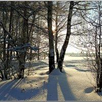 Зимний вечер :: Николай Дементьев