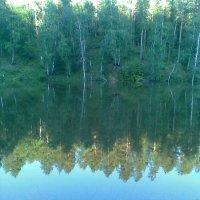 Лес и его отражение в воде :: Владимир Ростовский