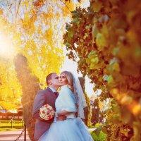 Осенняя свадьба :: Анастасия Данилова