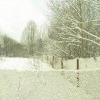 зима....земля отдыхает :: Михаил Жуковский