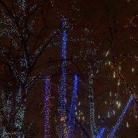 Москва в ожидании праздника 2 :: Galina