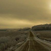 Утро :: Сергей Сол
