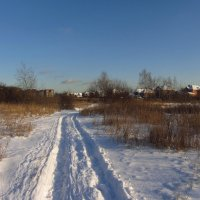 IMG_8380 - Дорогой Деда Мороза :: Андрей Лукьянов