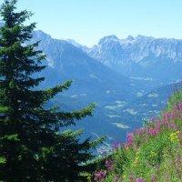 Сказочно красивые Альпы :: Galina Dzubina